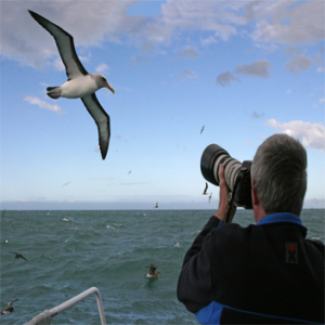 Kaikoura-48-hour-Photography-Competition-1
